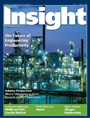 Insight Issue 22